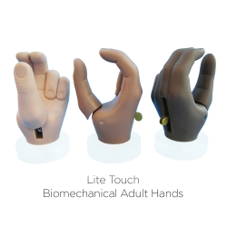 TRS Adult Hands & Prehensors